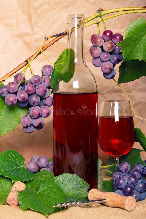 Vinho com grupo de uva vermelho imagens de stock royalty free