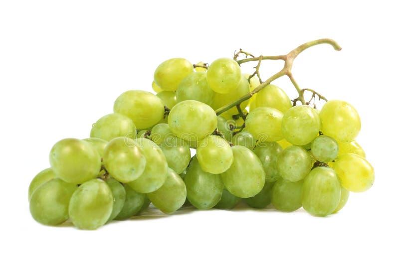 Vinho das uvas fotografia de stock