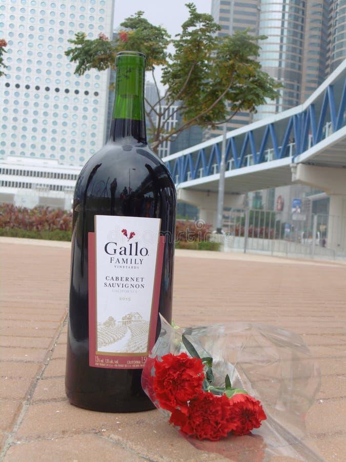 Vinho e rosas foto de stock royalty free