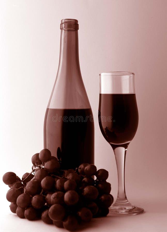 Vinho e uvas. imagens de stock