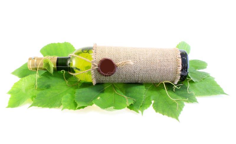 Vinho nas folhas das uvas fotografia de stock