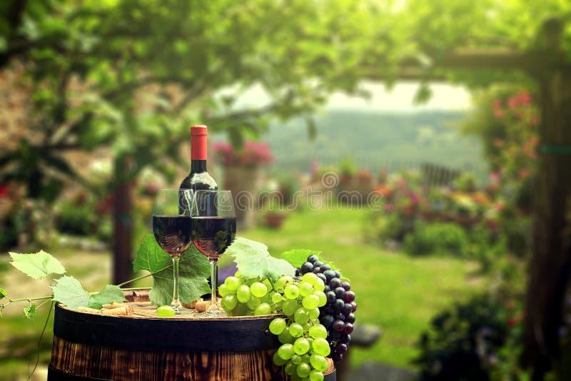 Vinho tinto com o tambor no vinhedo em Toscânia verde, Itália imagens de stock