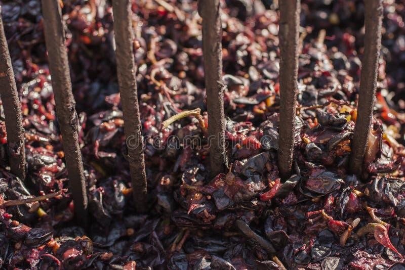 Vinificación Tecnología de la producción de vino fotos de archivo
