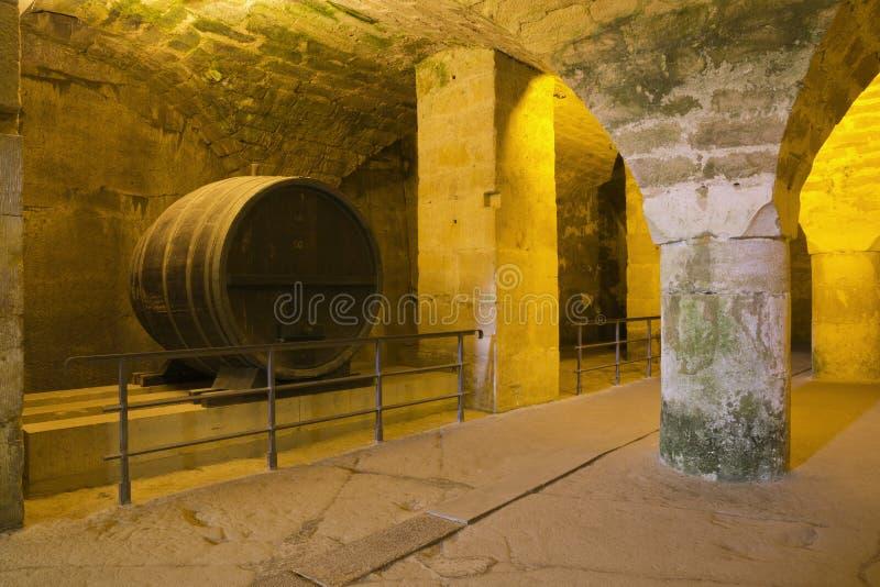 Vinkällare i den Konigstein fästningen royaltyfri bild