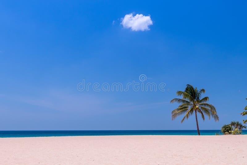 Vinka på strand- och himmelmolnlandskapet arkivbilder