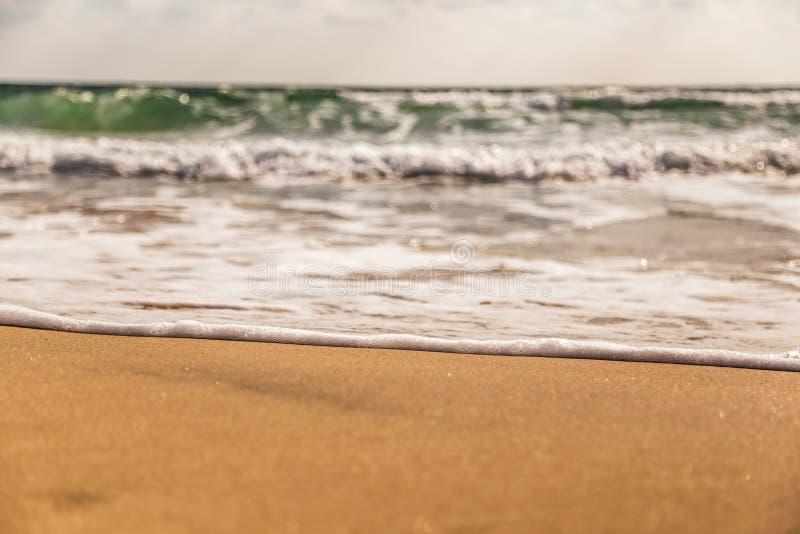 Vinka på stranden royaltyfri bild