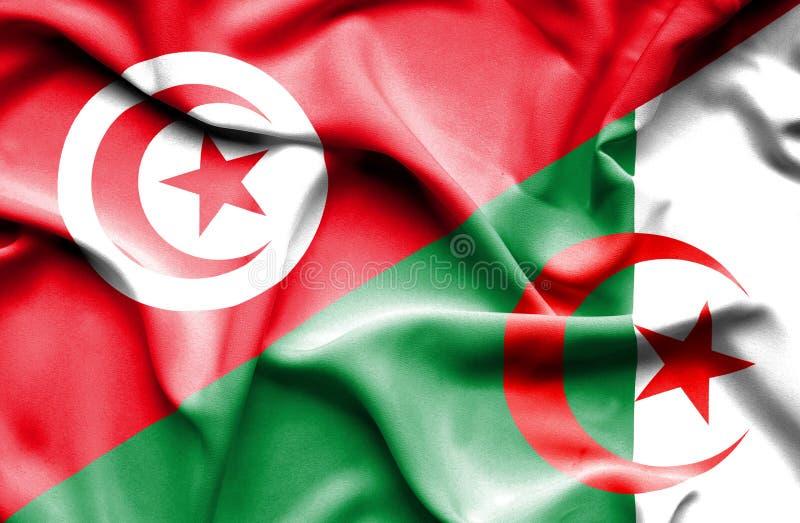 Vinkande flagga av Algeriet och Tunisien royaltyfri illustrationer