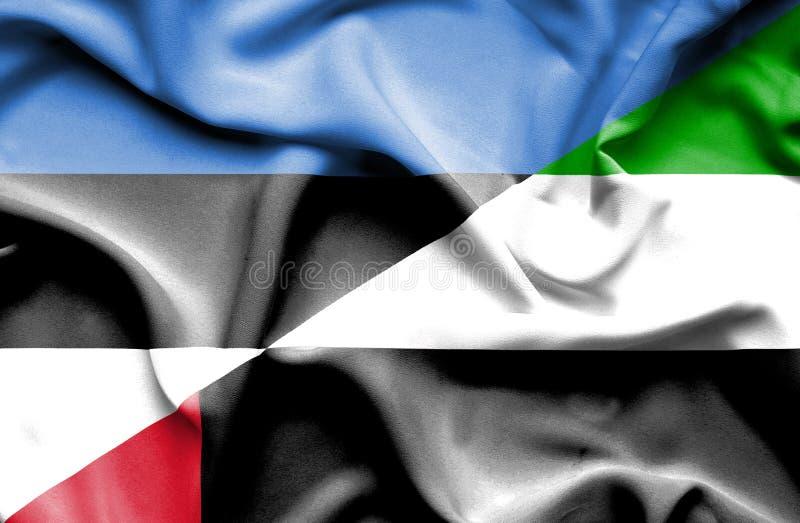 Vinkande flagga av Förenade Arabemiraten och Estland royaltyfri bild