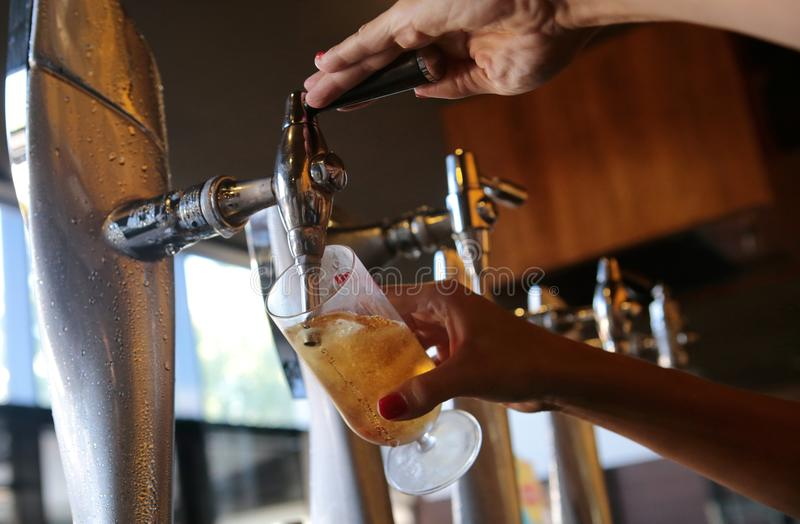 Vinkel för kallt öl för tryck för servitrisportion låg royaltyfria foton