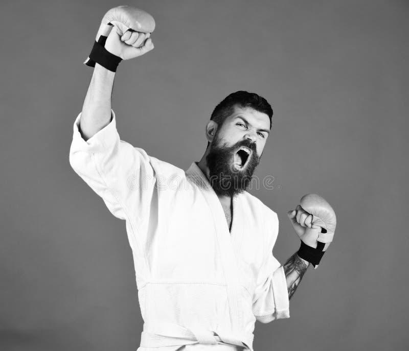 Vinnaren är karate Karateman med den ilskna framsidan i guld- boxninghandskar royaltyfria bilder
