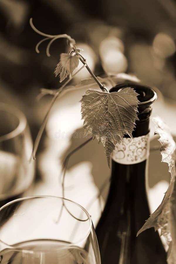 Vinnayathema stock afbeeldingen
