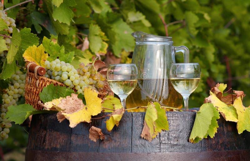Vino bianco della vigna fotografia stock libera da diritti