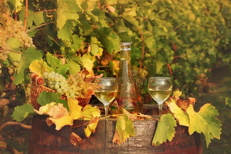 Vino bianco e vigna fotografia stock libera da diritti