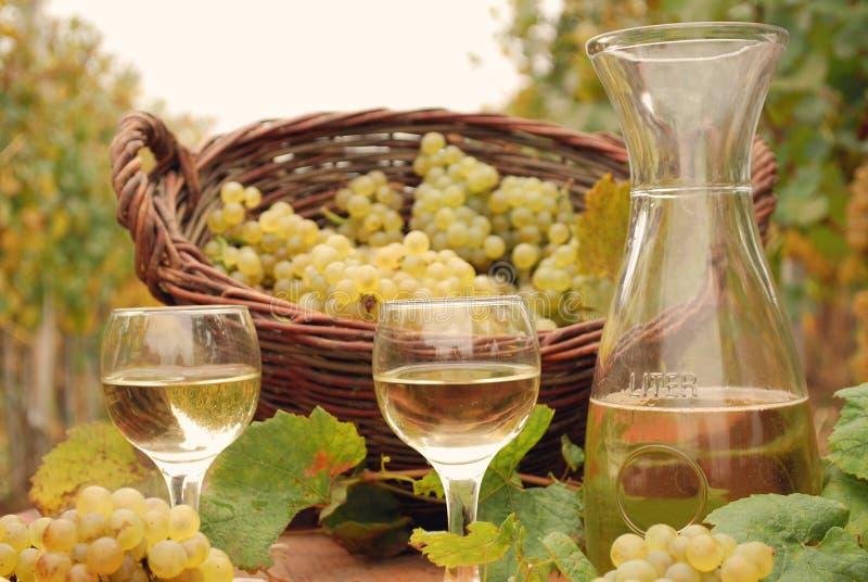 Vino bianco ed uva in vigna fotografia stock libera da diritti