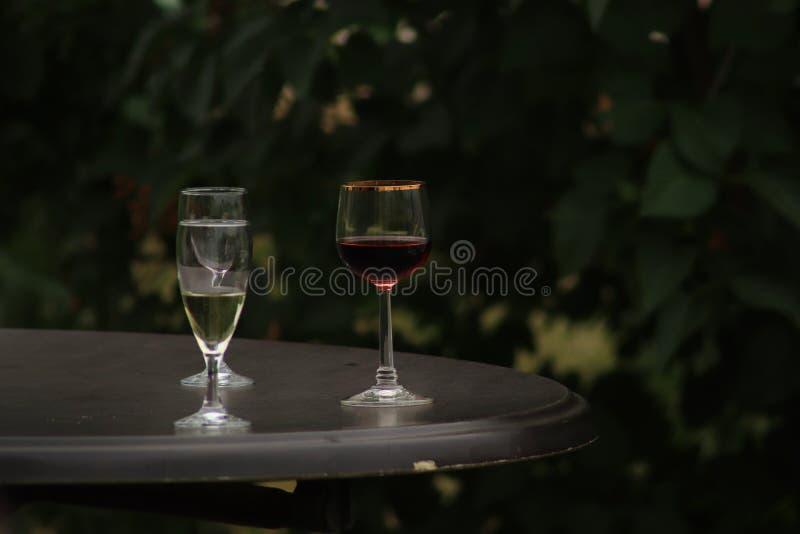 Vino blanco y rojo en el fondo de cristal en jardín imagen de archivo
