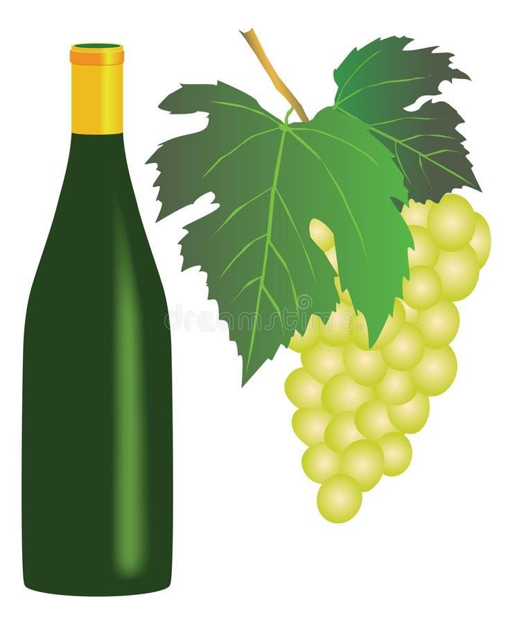 Vino blanco y uvas libre illustration