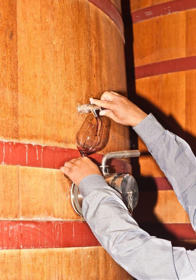 Vino de colada de una madera, barril de vino en una bodega foto de archivo libre de regalías