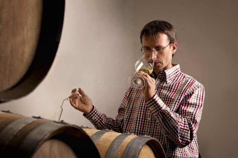 Vino de la prueba del Winemaker en sótano. fotografía de archivo