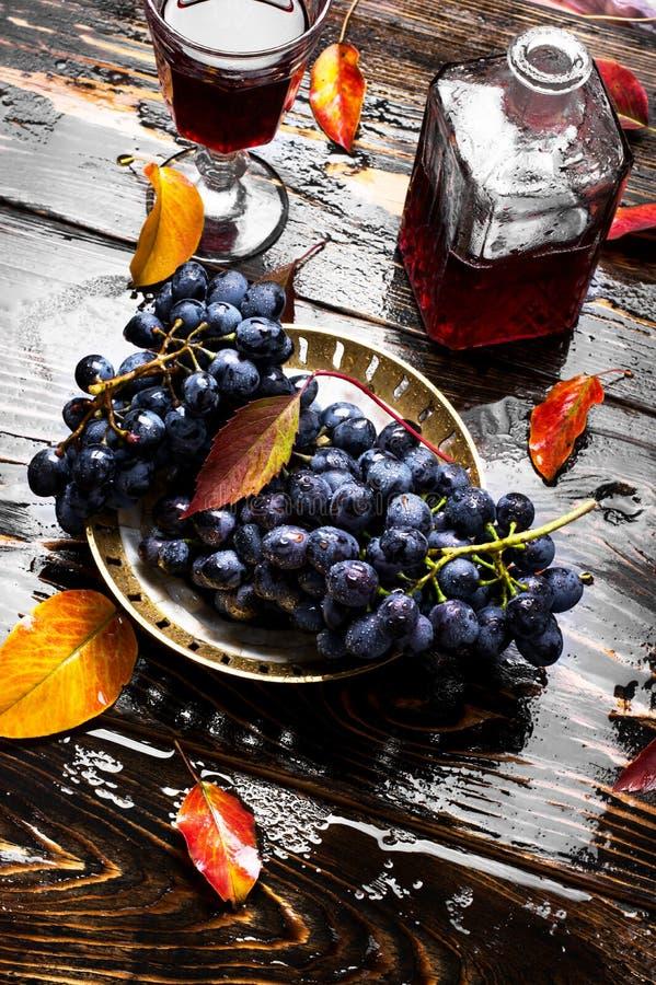 Vino de las uvas del otoño imagen de archivo