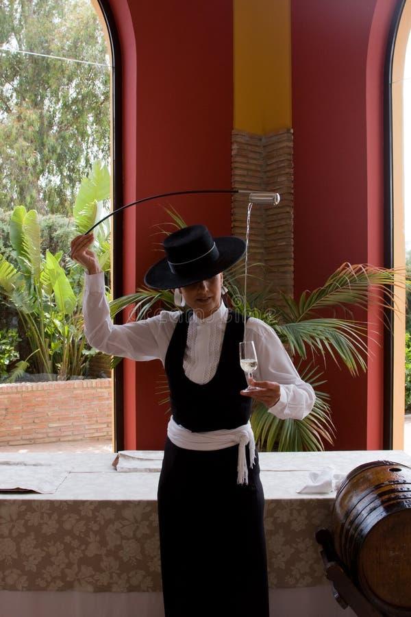 Vino español fotografía de archivo libre de regalías