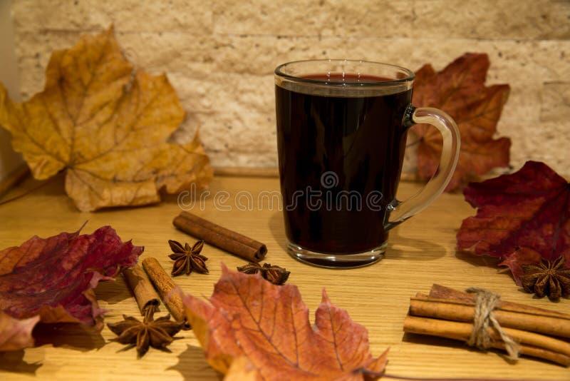 Vino reflexionado sobre rojo con las especias: estrellas del canela y del anís, otoño f foto de archivo libre de regalías