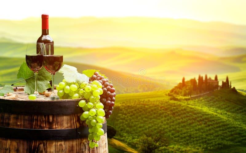 Vino rojo con el barril en viñedo en Toscana verde, imagen de archivo libre de regalías