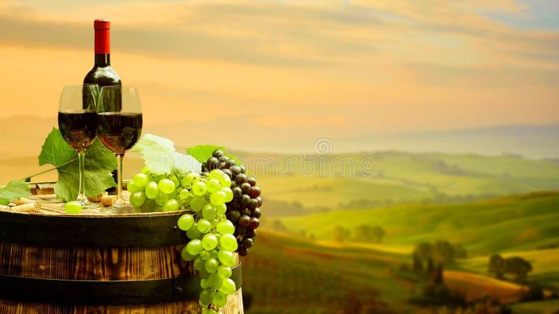Vino rojo con el barril en viñedo en Toscana verde fotos de archivo