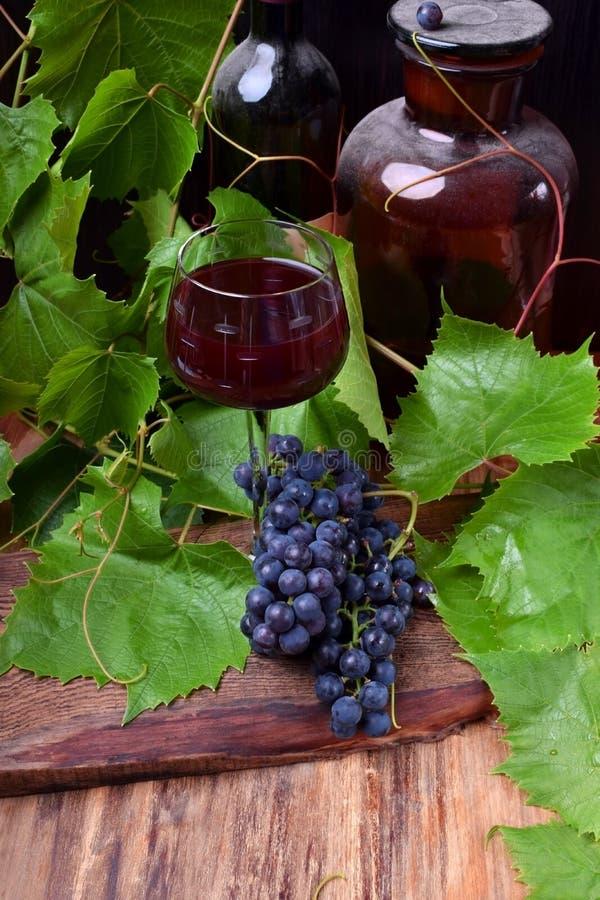 Vino rojo en un vidrio Un manojo de uvas azules al lado de él imágenes de archivo libres de regalías