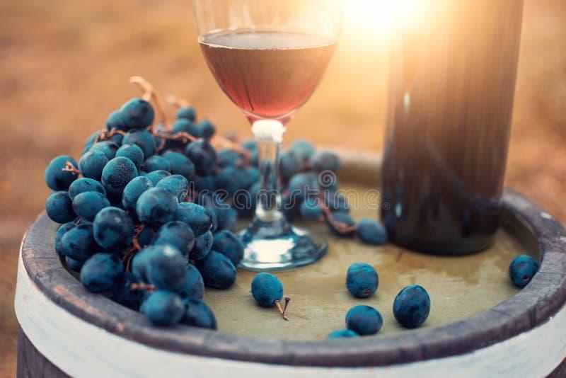 Vino rojo y uvas frescas foto de archivo