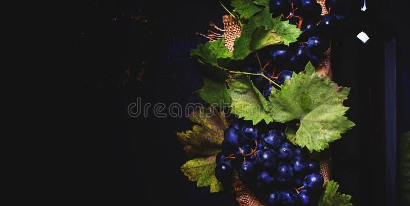 Vino rosso in bottiglia ed uva blu, fondo nero della bevanda, v superiore immagini stock libere da diritti