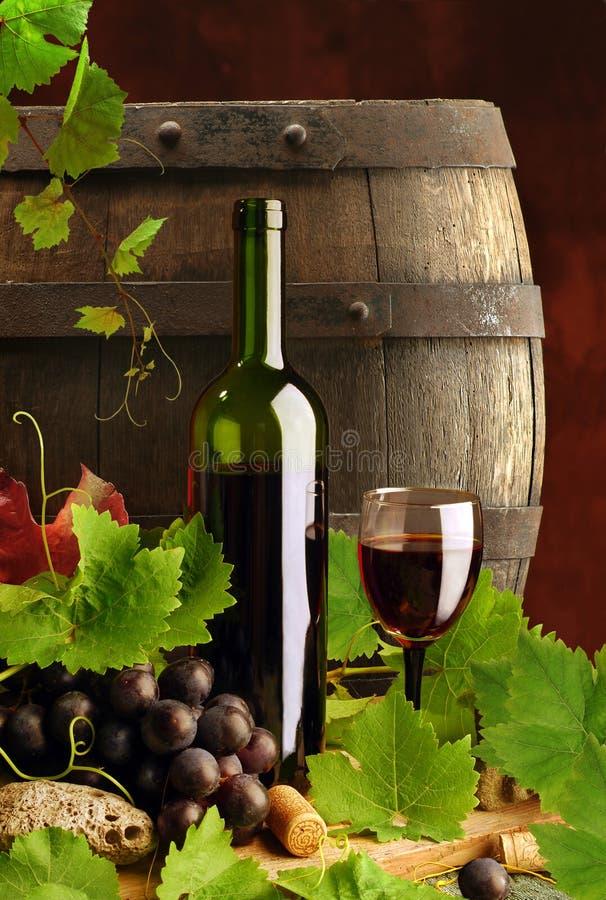 Vino rosso con la vite ed il barile fotografie stock libere da diritti