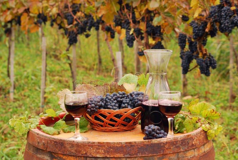 Vino rosso ed uva sul barilotto di legno in vigna fotografie stock libere da diritti