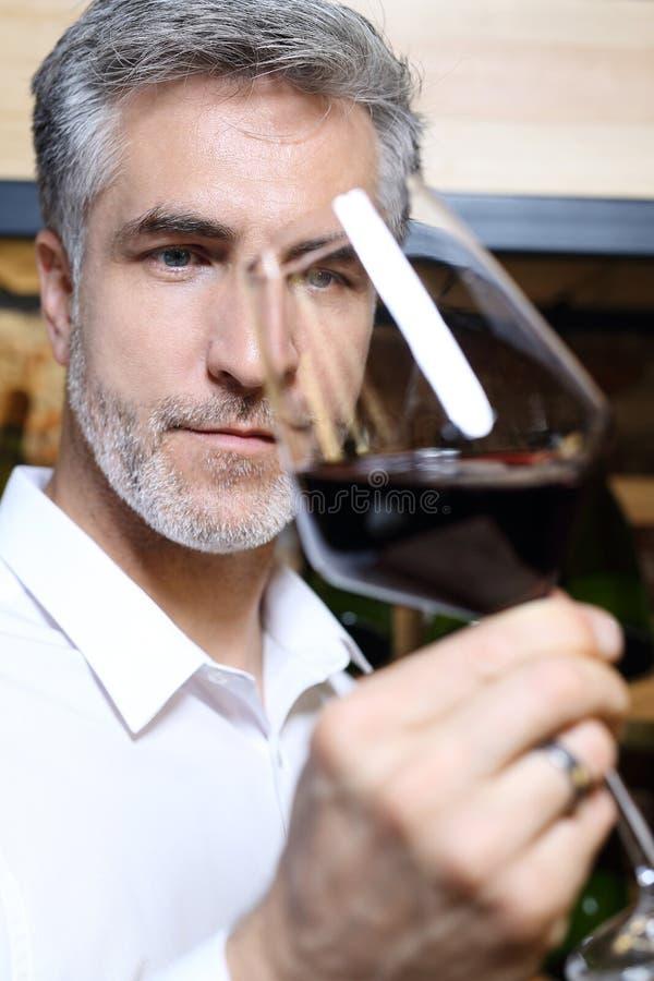 Vino rosso Vino bevente dell'uomo in un ristorante fotografia stock