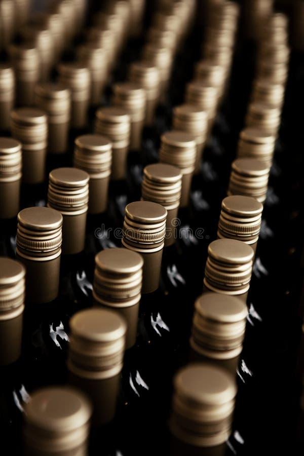 Vinodling för Wineflaskor royaltyfri bild