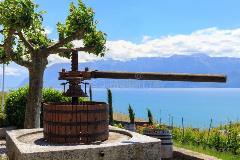 Vinpress på vingård arkivfoto