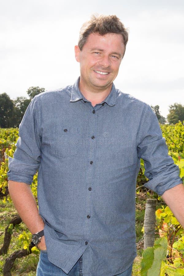 vinproducentmananseende på vingården på solig dag fotografering för bildbyråer
