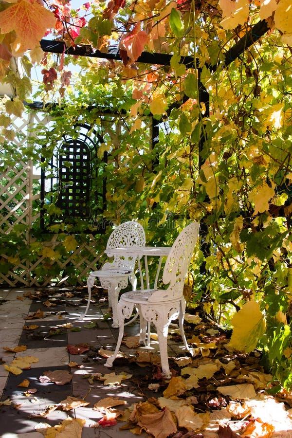 Vinranka-täckt farstubro med bultat möblemang på hösten royaltyfri bild