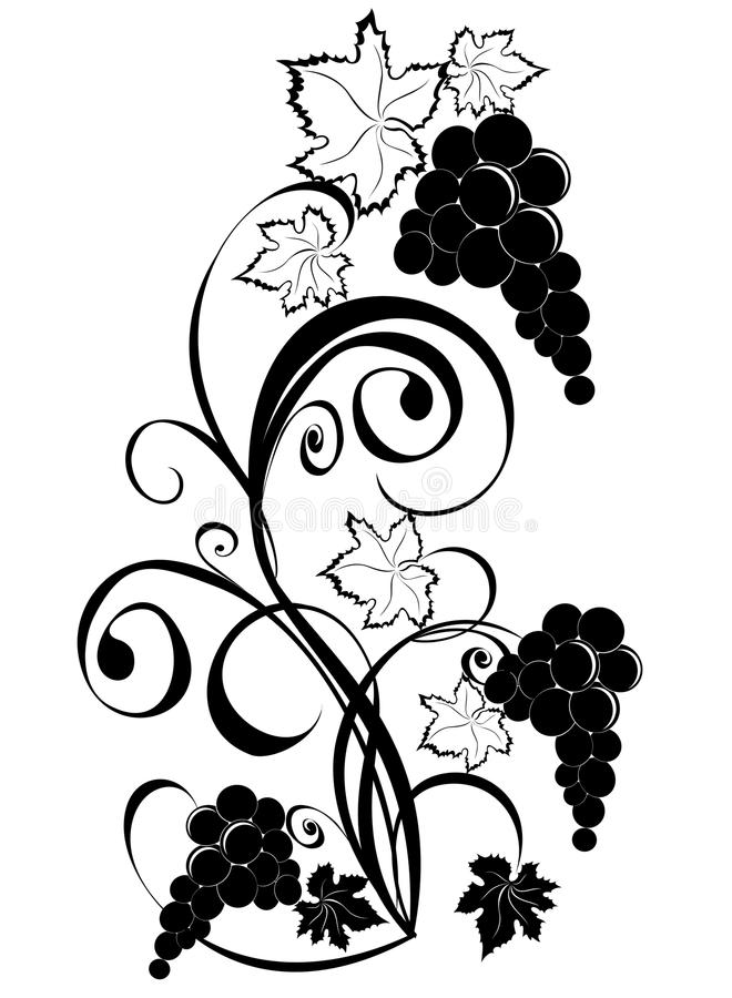 Vinranka. Winedesignelement. vektor illustrationer