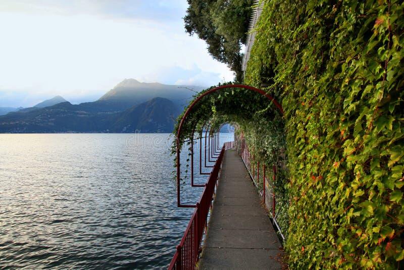 Vinrankan täckte gångbanan längs sjön Como i Varenna Italien royaltyfri fotografi
