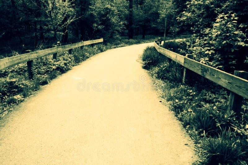 Download Vintage alley stock image. Image of walk, grass, vintage - 2985201