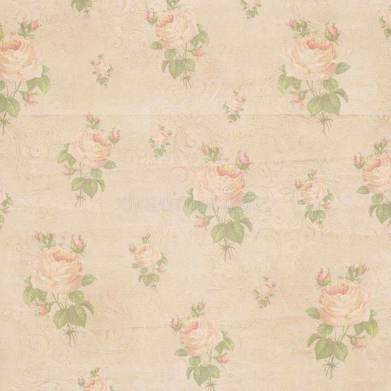 Vintage antique paper shabby rose flower texture royalty free stock photography