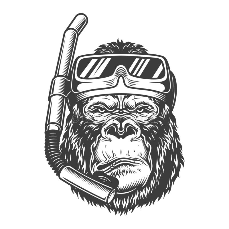 Vintage arrogant gorilla diver. With scuba mask and snorkel in monochrome style isolated vector illustration stock illustration