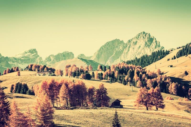 Vintage Autumn Landscape con las montañas foto de archivo