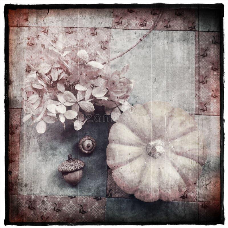 Download Vintage Autumn Still Life stock image. Image of acorns - 27300437