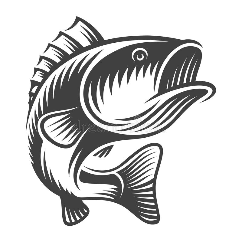 Vintage bass fish concept. In monochrome style isolated vector illustration vector illustration