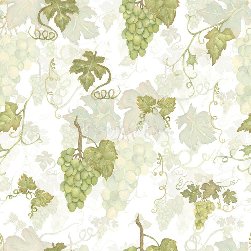 Vintage Beautiful watercolor hand drawn seamless green and yellow pattern with grapes branches and leaves.  Isolated on white. Background.Perfect for your stock illustration