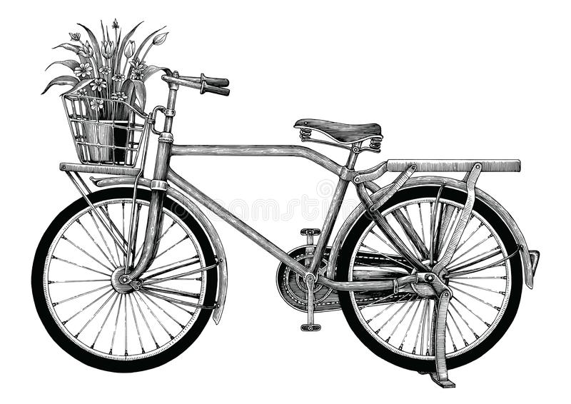 Vintage bicycle and flower pot hand drawing clip art isolated on. White bakground stock illustration