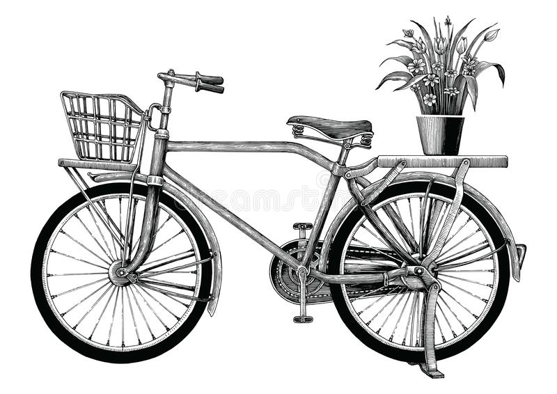 Vintage bicycle and flower pot hand drawing clip art isolated on. White bakground royalty free illustration