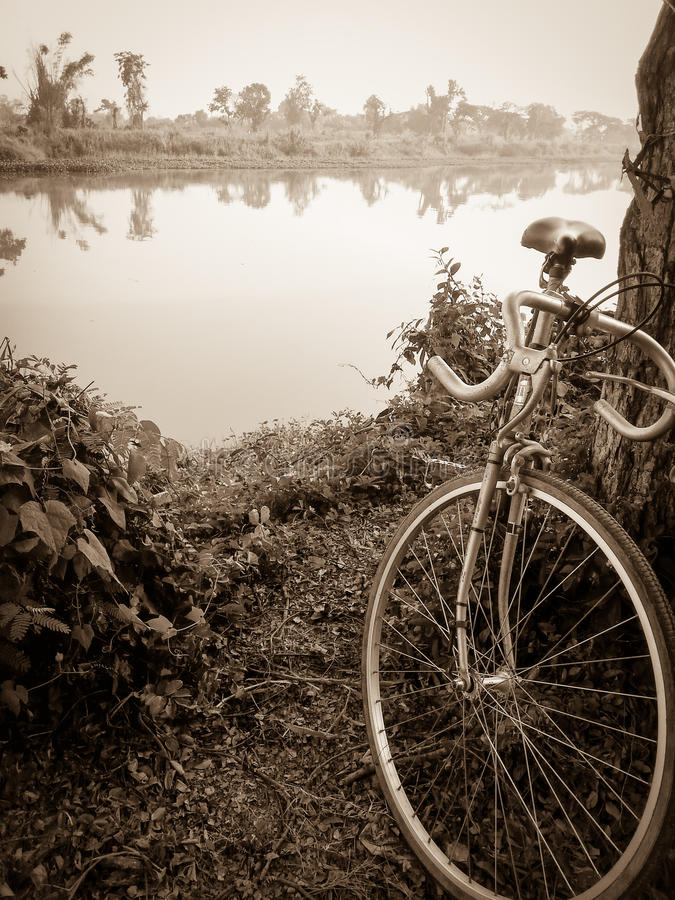 Vintage bicycle style near the river stock photos