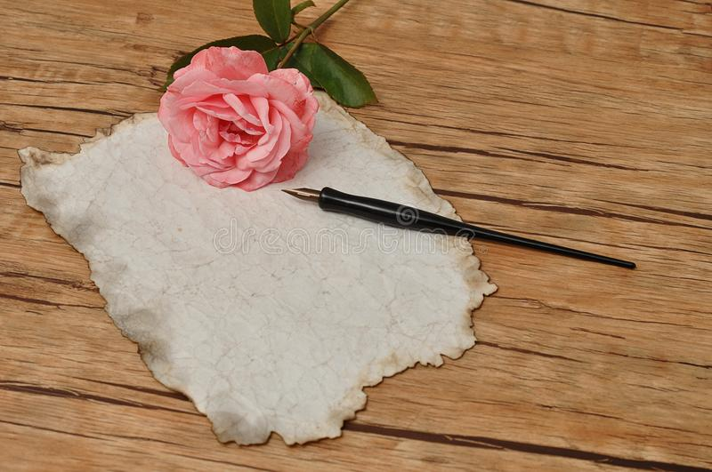 A vintage black fountain pen with old paper and a pink rose stock photo